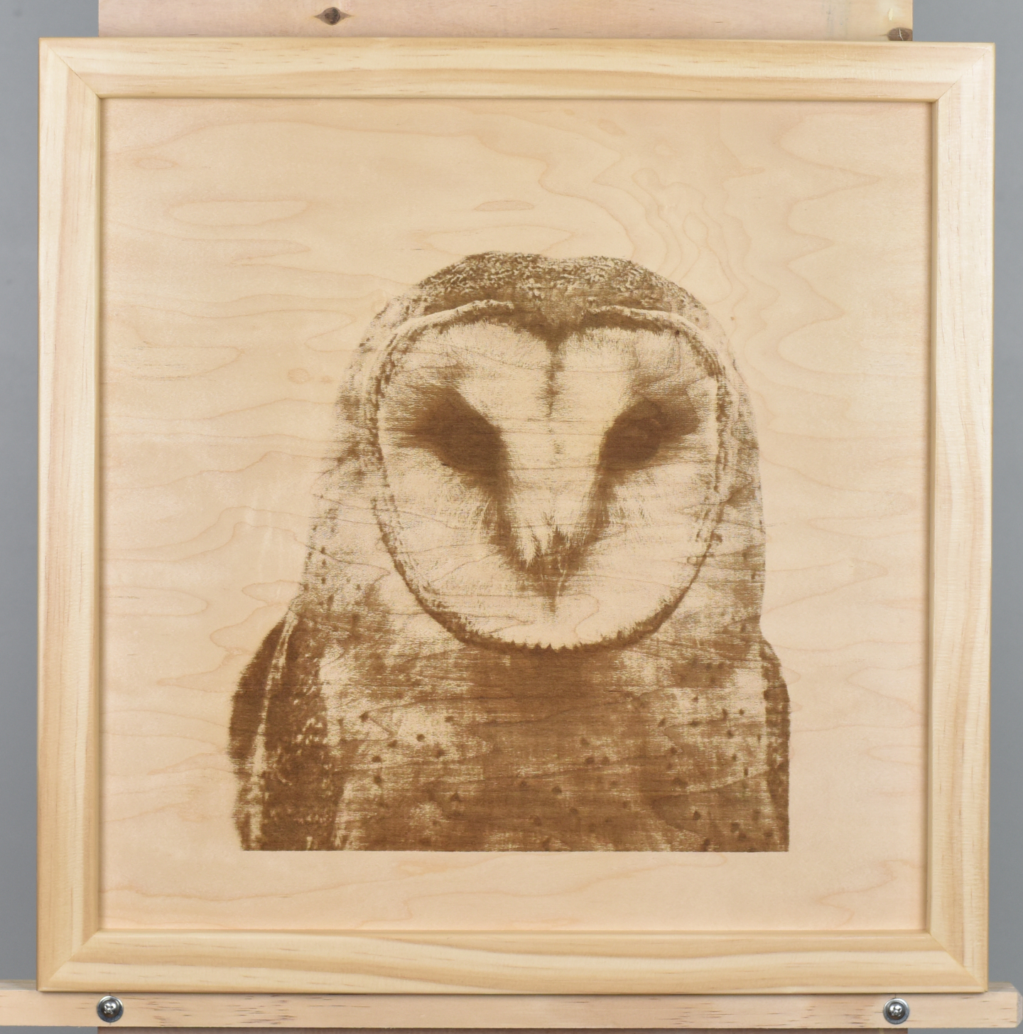 A wood burning (digital pyrograph) of a barn owl made from a photograph by Mark Broadhurst.