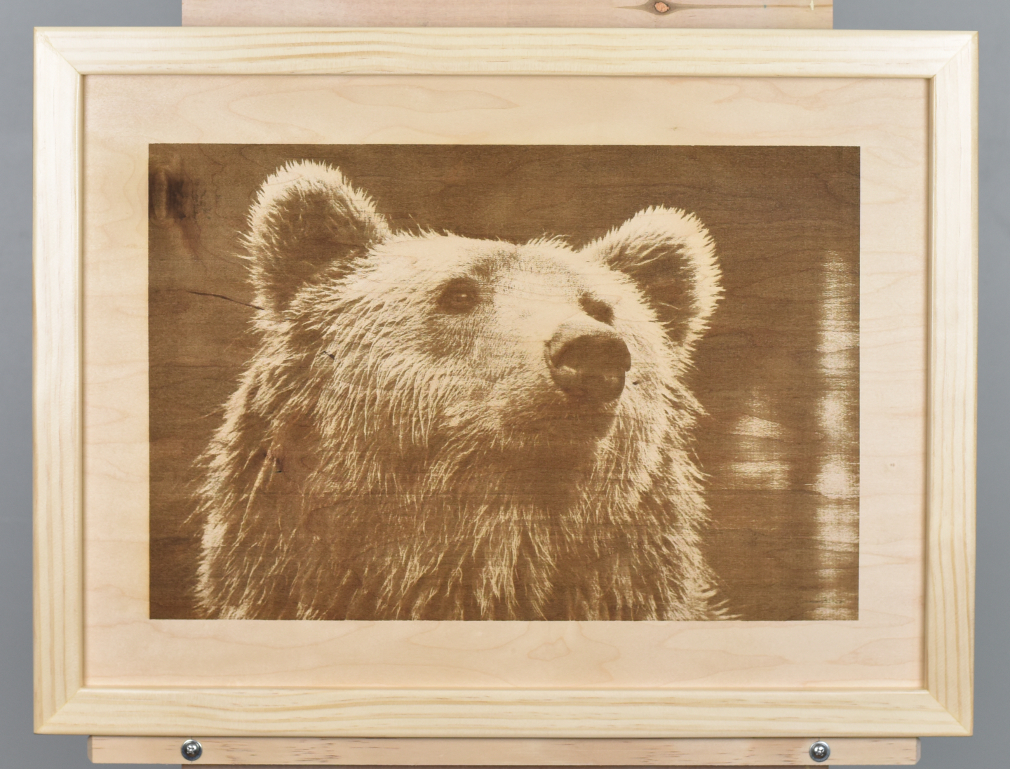 A wood burning (digital pyrograph) of a brown bear based on a photograph by Rasmus Svinding.